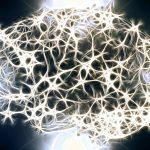 Maladie neuro dégénérative Personnes âgées Paris